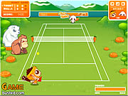 Click to Play Crazy Tennis