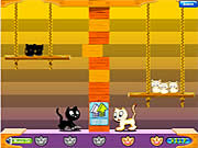 Click to Play Swing Cat